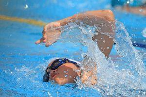 水泳肩の画像
